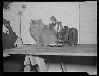 Photo: Boston Library